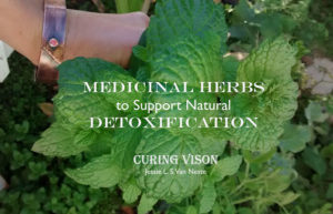 Medicinal Herbs to Support Detoxification on the Alkaline Diet