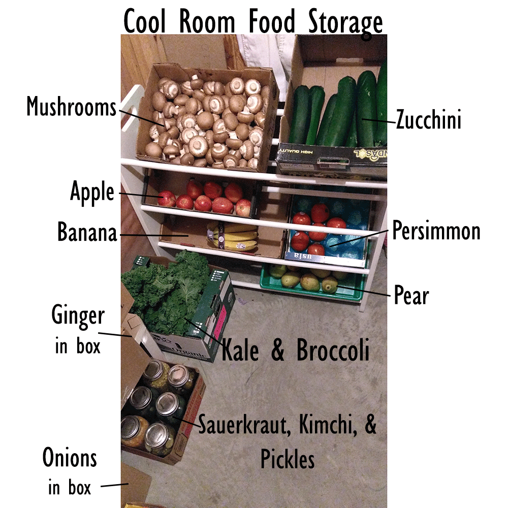 Cold Room Food Storage curingvision.com