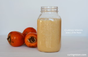 Alkaline Diet Persimmon Coconut Milk Smoothie Recipe curingvision.com