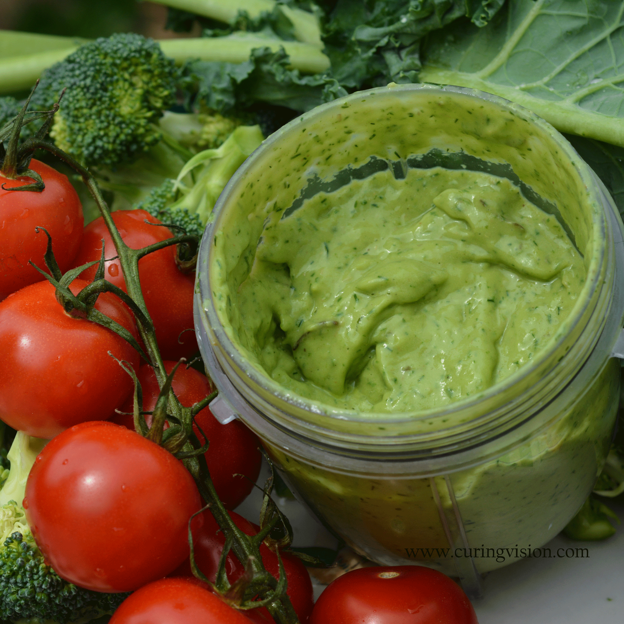 Easy Avocado Dip for Alkaline Diet, Paleo, AIP Diet, Whole 30, Wahls Protocol, and Raw Vegan Diet